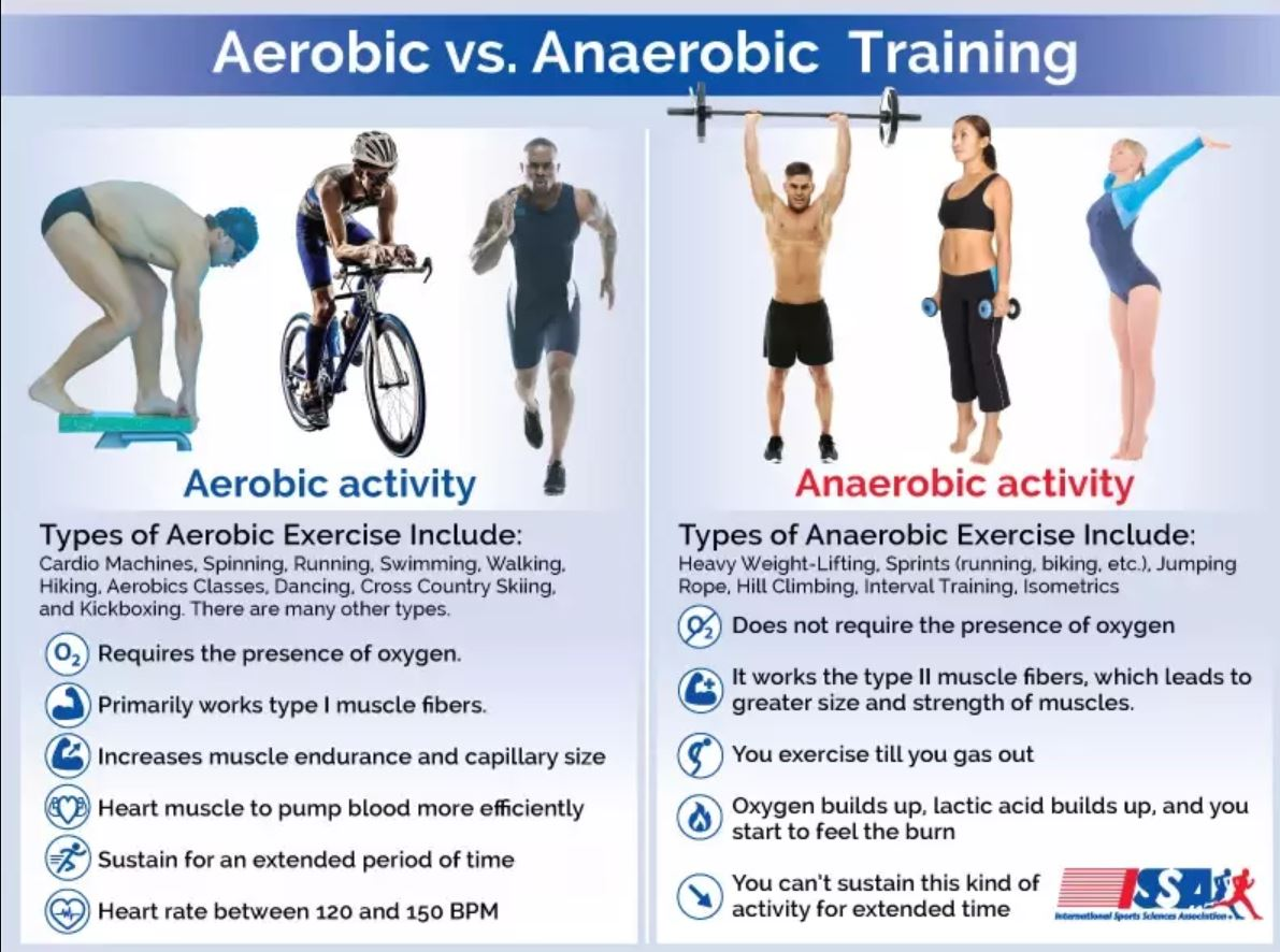 Aerobic vs Anaerobic Systems