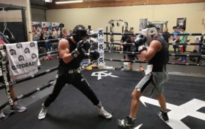 How To Increase Stamina For Boxing And Get Fighting Fit - Must Read Guide