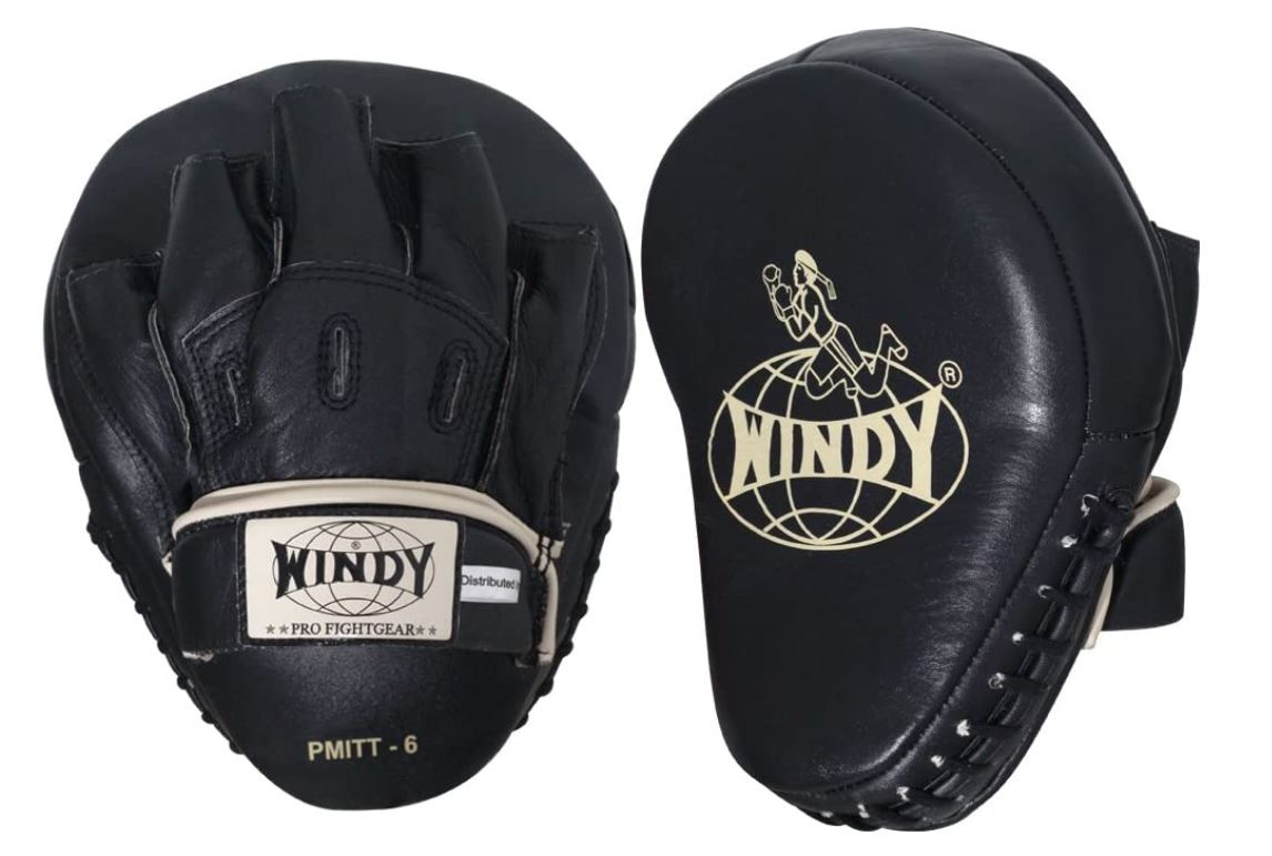 Windy Boxing Mitts